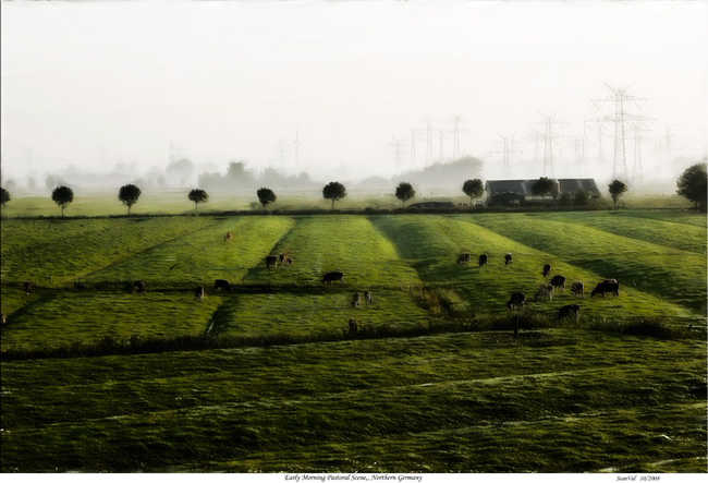 Early Morning Pastoral Scene, Northern Germany