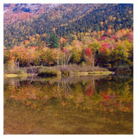 New Hampshire Fall Color