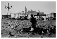 Girl with Pigeons - Venice