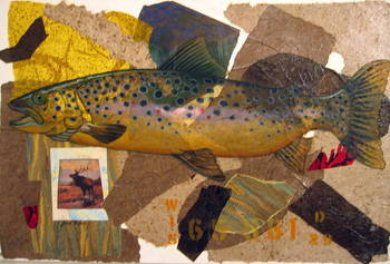 Trout Emerging