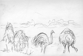 Ostriches and Termite Mounds