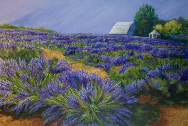 Sunrise at the Lavender Farm