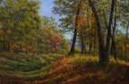 SUNLIGHT IN THE AUTUMN WOOD 16 X 26