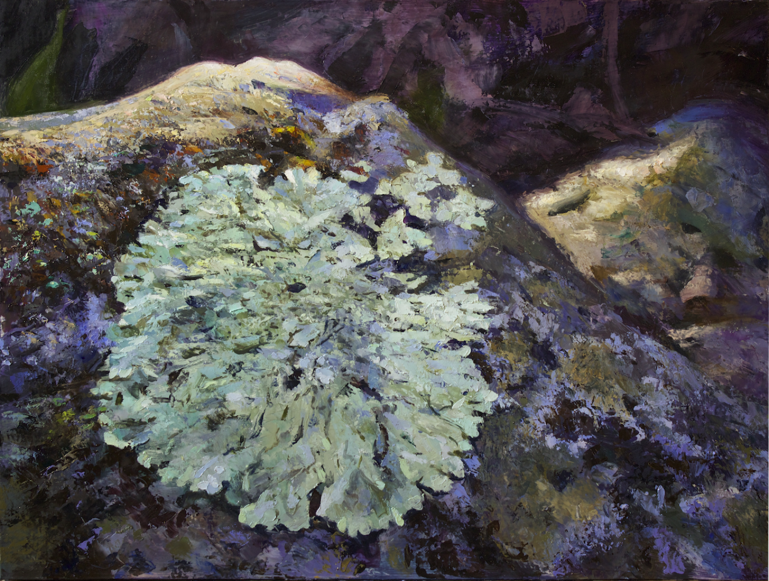 Current work inspired by lichens, their textures and colors as well as their role in making our planet habitable
