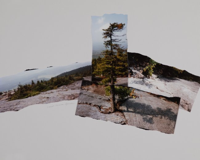 Mountain Pieces with Tree, by C.C.Bjerke