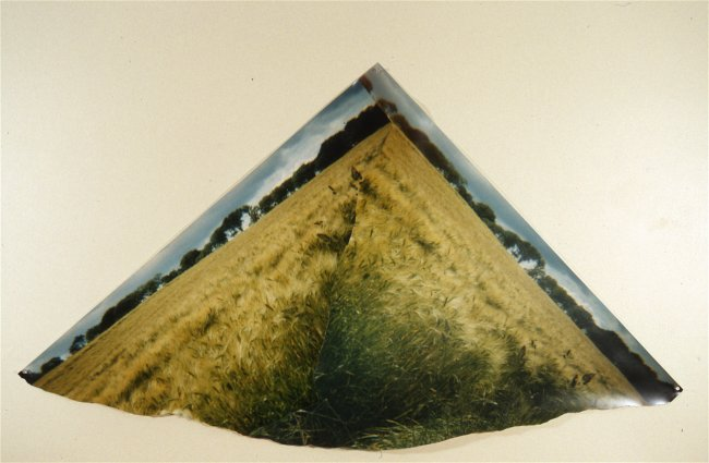 To Make a Mountain out of a Grainfield, by C.C.Bjerke